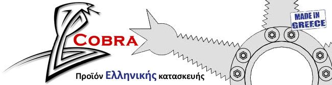 Περιμετρική ασφάλεια COBRA